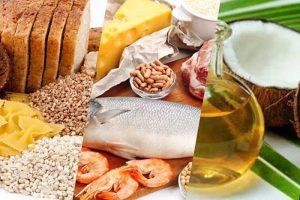 Macronutrientes Proteina Grasa y Carbohidratos