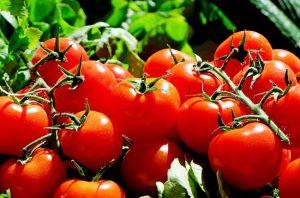 Alimentos Tomate