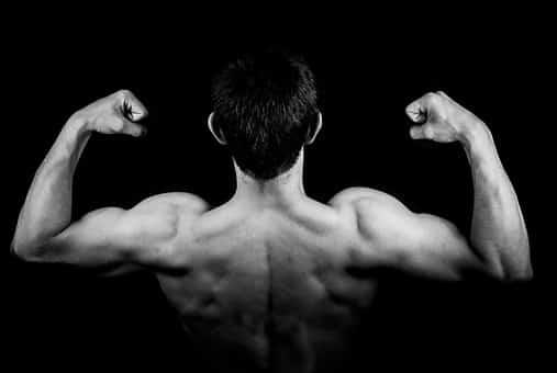 rutina de pesas aumentar masa muscular