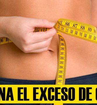 dietas para adelgazar elimina el exceso de grasa