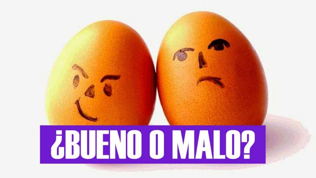 huevos colesterol alto