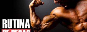 rutina de pesas para aumentar masa muscular