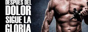 como aumentar masa muscular Rutina de pesas