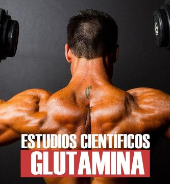 Suplemento Glutamina según estudios científicos