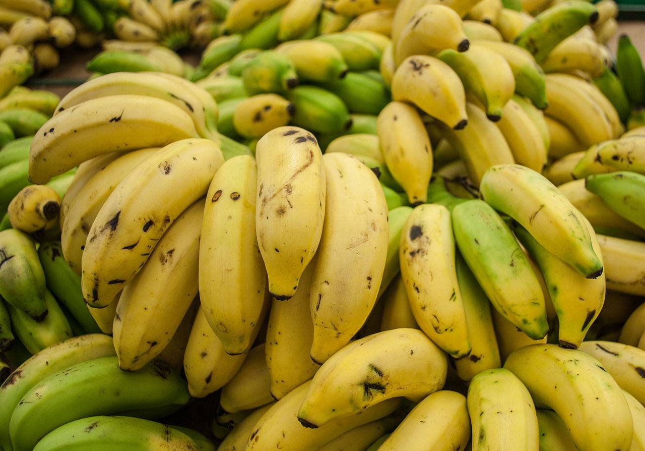 Beneficios del plátano y sus propiedades