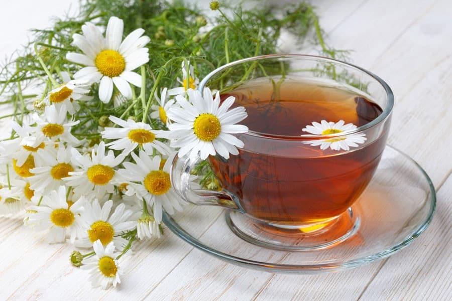 Té de manzanilla. bebida refrescante y saludable