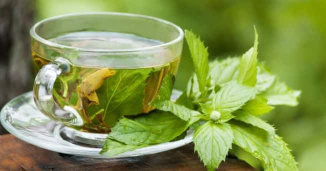 beneficios de la hierbabuena Usos medicinales