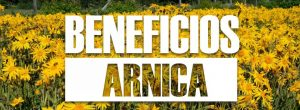 beneficios de la ARNICA 20