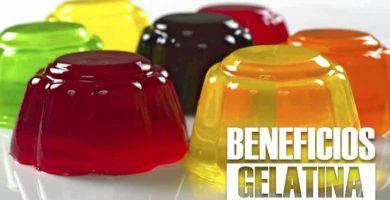 beneficios de la GELATINA 27
