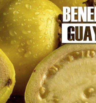 beneficios de la GUAYABA 30