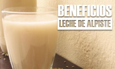 beneficios de la LECHE DE ALPISTE