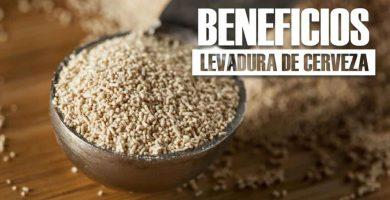 beneficios de la LEVADURA DE CERVEZA