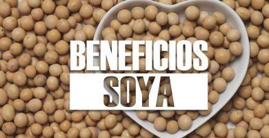 beneficios de la SOYA
