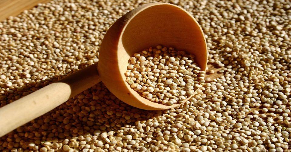 Quinoa | Alimentos para aumentar masa muscular