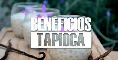 beneficios de la TAPIOCA