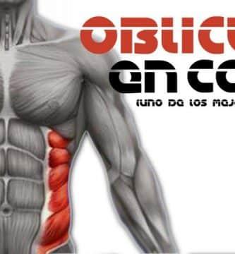 ejercicios para oblicuos