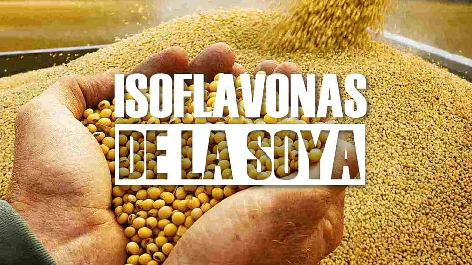 Beneficios de las isoflavonas de soya