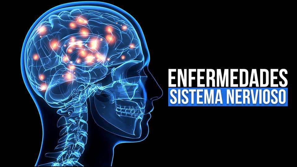 22 Enfermedades del sistema nervioso: Causas, Síntomas y Tratamiento