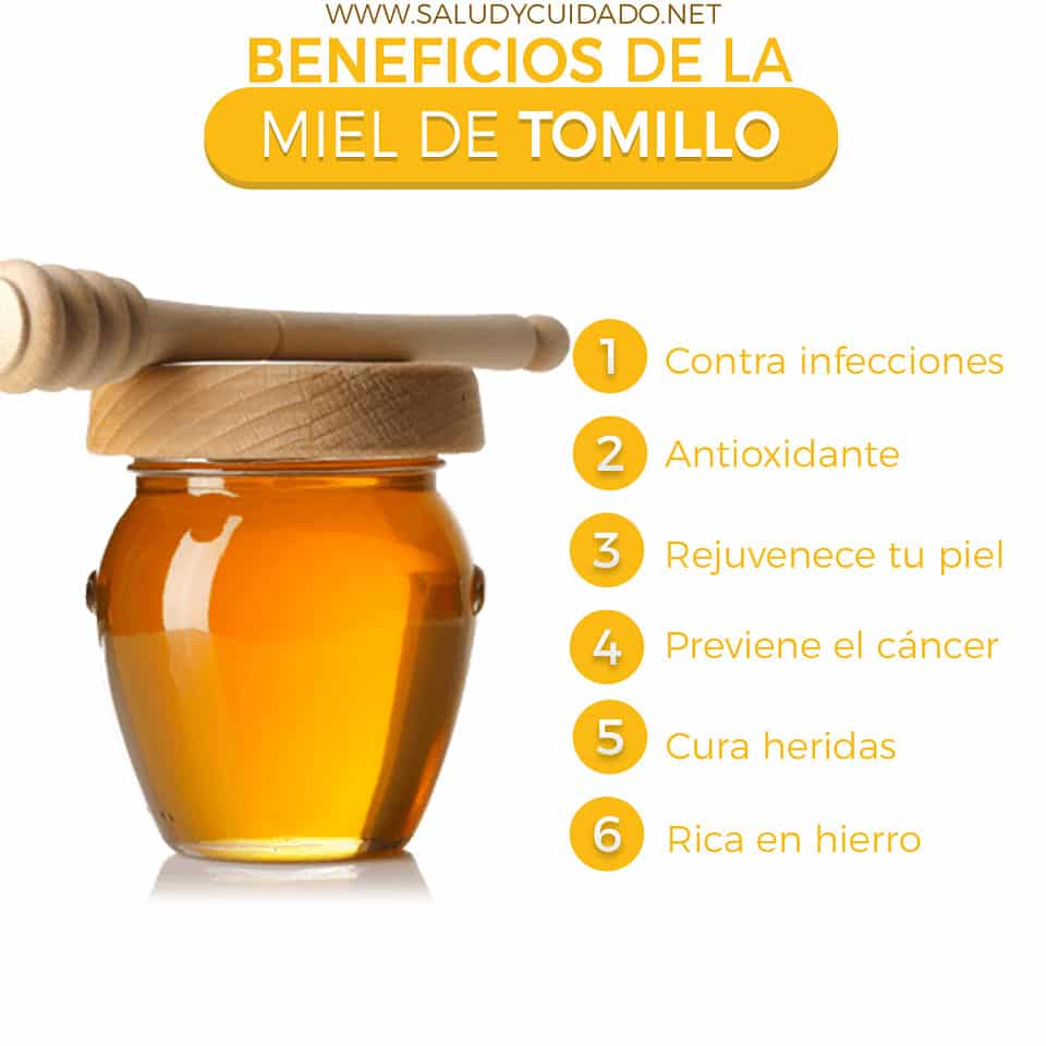 Propiedades de la miel de tomillo y BENEFICIOS ¿Para Qué Sirve?