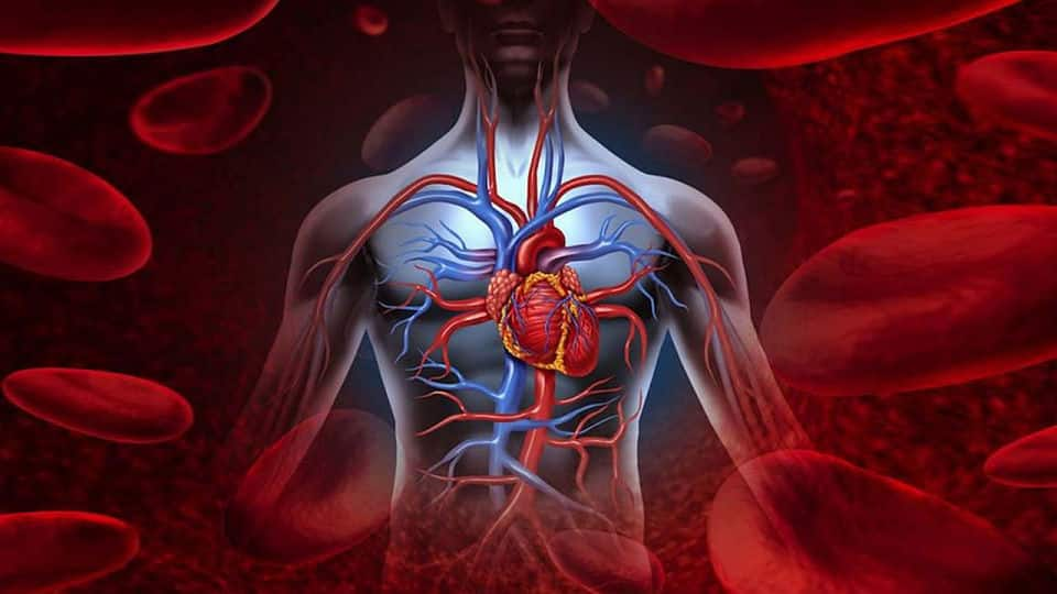 enfermedades del sistema circulatorio