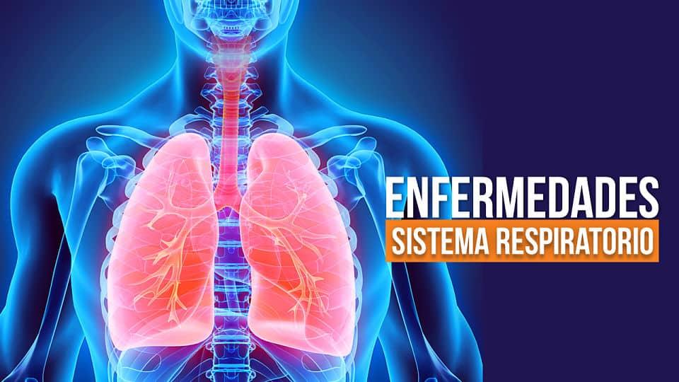 Enfermedades del sistema respiratorio más comunes 【Con Síntomas】
