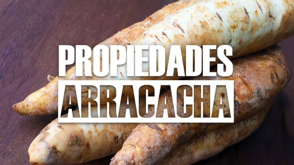 BENEFICIOS DE LA ARRACACHA