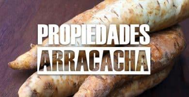 BENEFICIOS DE LA ARRACACHA