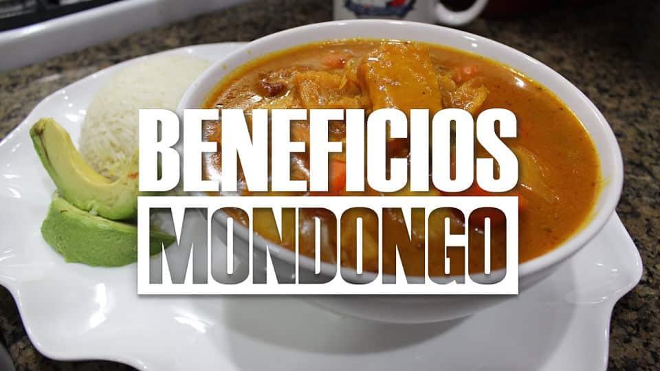 BENEFICIOS Del mondongo