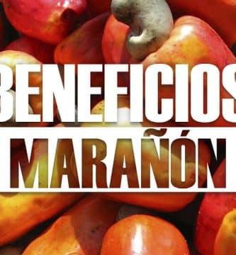Beneficios del marañón