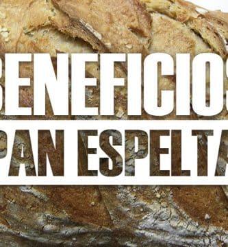 Beneficios del pan de espelta