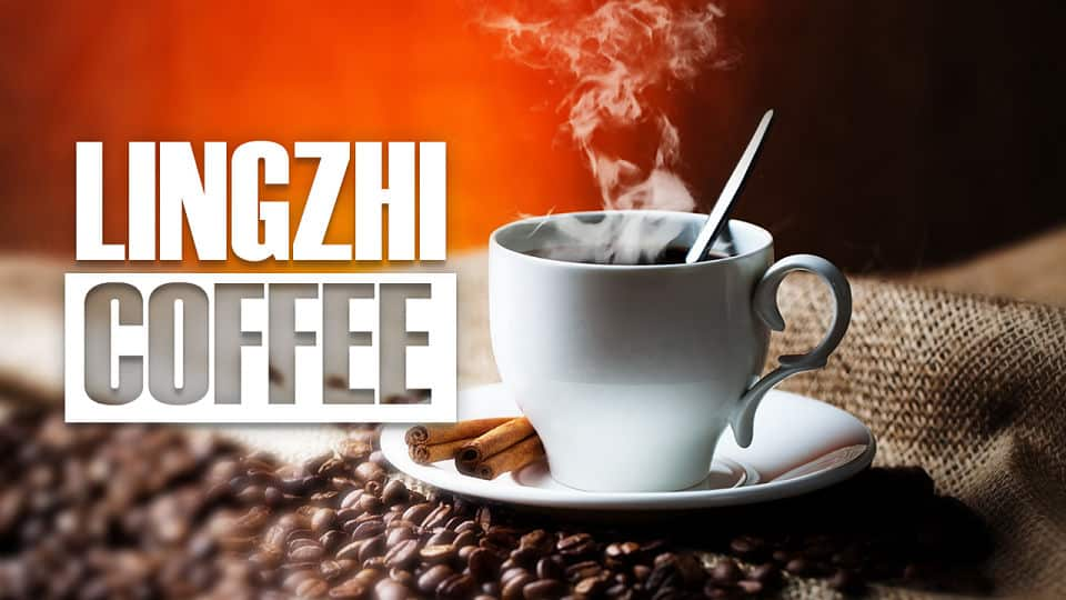 LINGZHI COFFEE