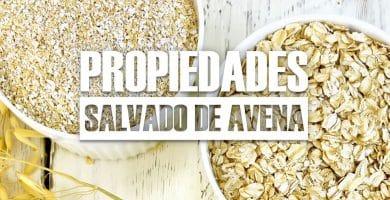 propiedades del Salvado de Avena