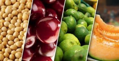 alimentos con estrógenos