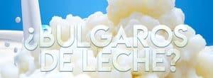 para que sirven los búlgaros de leche