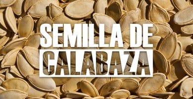 Beneficios de la Semilla de Calabaza y Propiedades