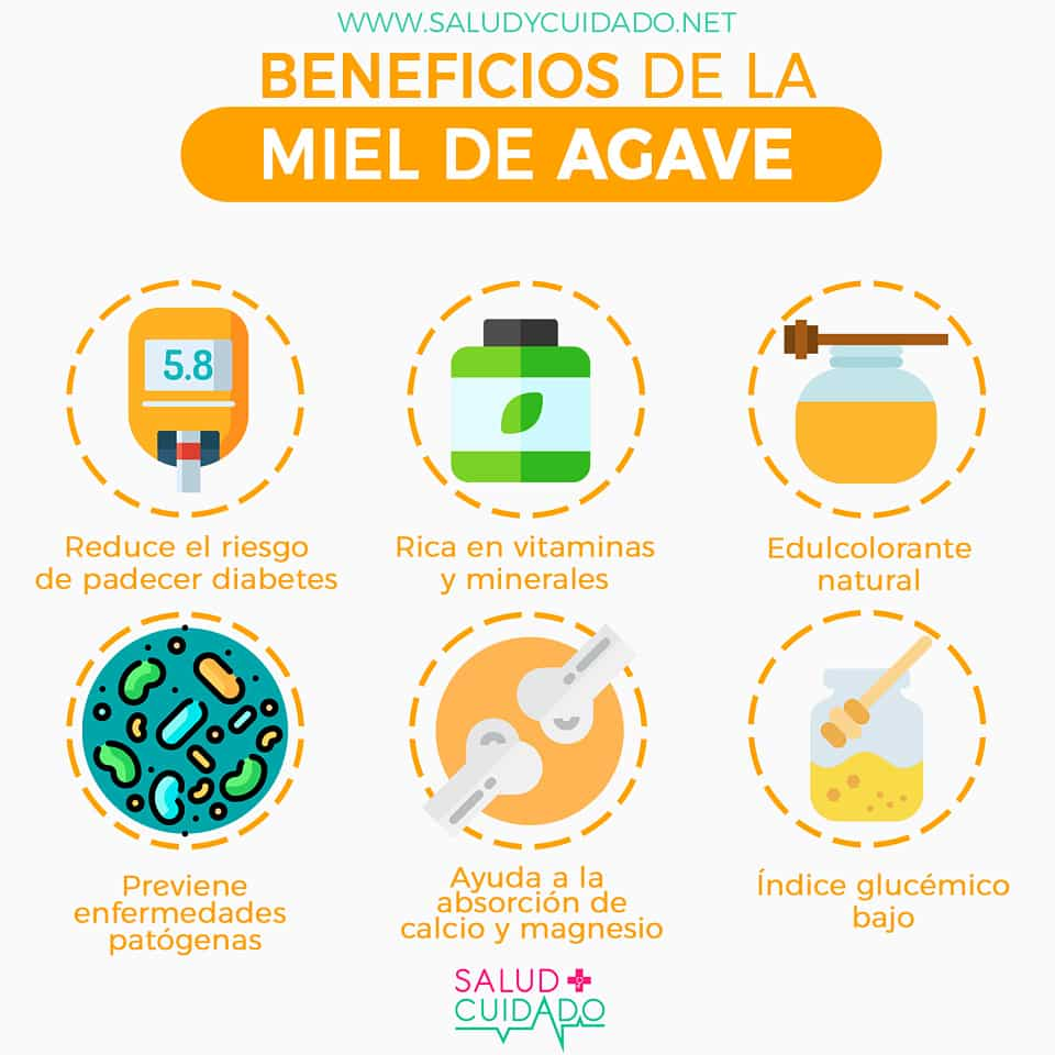 MIEL DE AGAVE Beneficios
