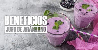 Beneficios del JUGO DE ARÁNDANO para la Salud (+ RECETA)