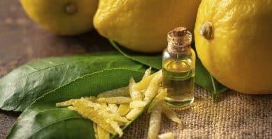 8 Usos y beneficios de la cáscara de limón